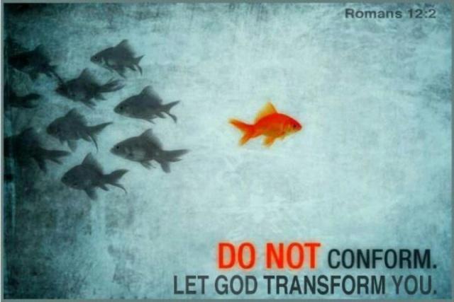 conform transform