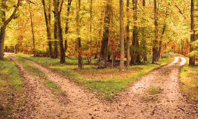 two paths.jpg