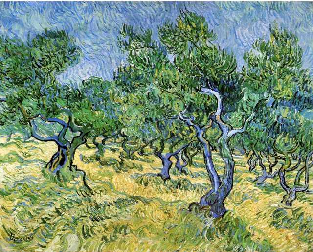 olive-grove-1889.jpg