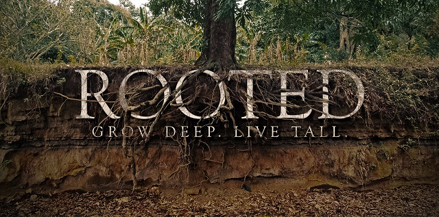 rooted deep.jpg